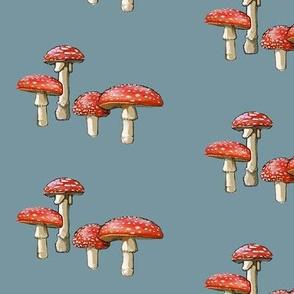 amanita mushroom, blue