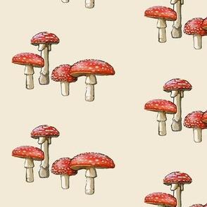 amanita mushroom, off white