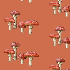 amanita mushroom, red