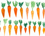 Carrots_tiled_lifesize_thumb