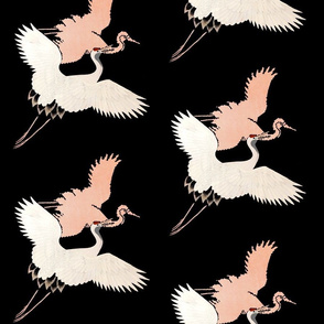 Japanese  Heron