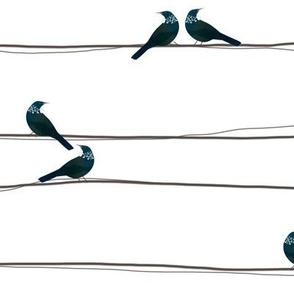 Watercolour Tui On A Wire