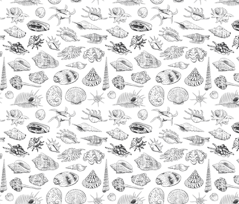 Unique collection of sea shells  fabric by ekaterinap on Spoonflower - custom fabric