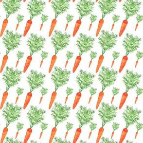 vegetables-carrot