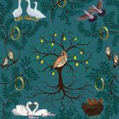 12_Days_of_Christmas_Birds