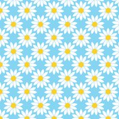 Rdaisies_6_shop_thumb