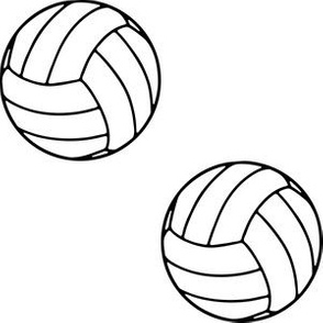 Three Inch Black and White Sports Volleyball Balls on White