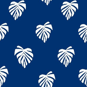 leaf // leaves tropical monstera plant palm springs vacation blue