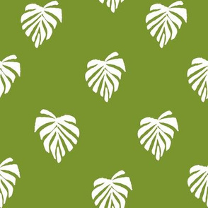leaf // leaves tropical monstera plant palm springs vacation tropical green