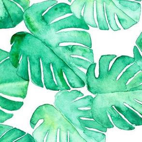 watercolor monstera leaf (90)