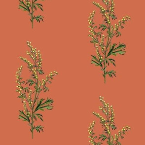 wormwood, red