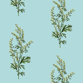 wormwood, lighter blue