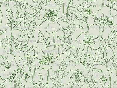 Poppies in Green