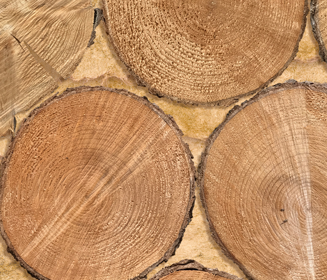 chopped wood photo  fabric by karismithdesigns on Spoonflower - custom fabric