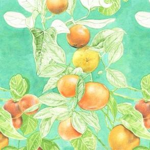 Oranges and Strychnine