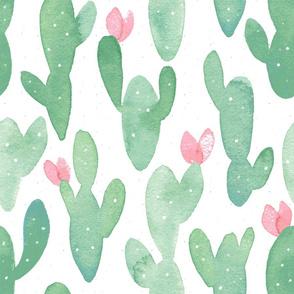 Summer Cacti // Large // White