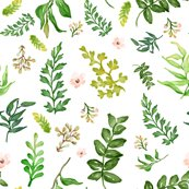 Rfloral_dreams_leaves___mixed_florals_shop_thumb
