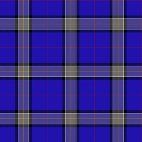 "Lloyd of Astargus tartan, 6"", for any Scottish Lloyd."