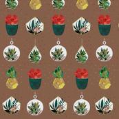 Festive Succulents on Bronze