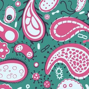 bacterial parsley green