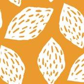 Ryellow_walnut-01_shop_thumb