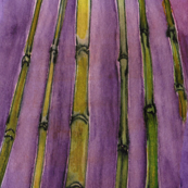 violet bamboo