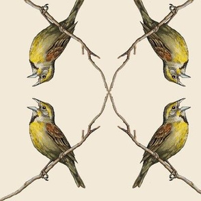Dickcissel MIRROR, off white