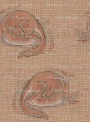 Adoptable Cat Dragon