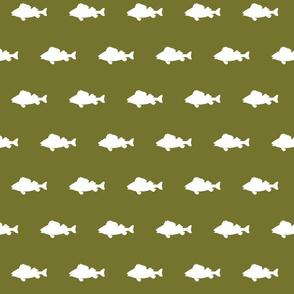 fish run on moss green
