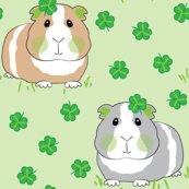 Rguinea-pigs-with-shamrocks_shop_thumb