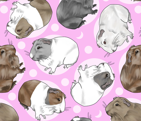 Guinea pigs and moon dots - large pink fabric by rusticcorgi on Spoonflower - custom fabric