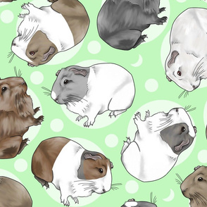 Guinea pigs and moon dots - large green