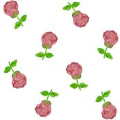 Rustic Rose Buds