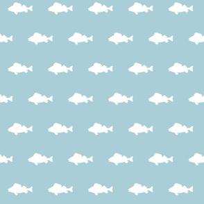fish run on glacier water