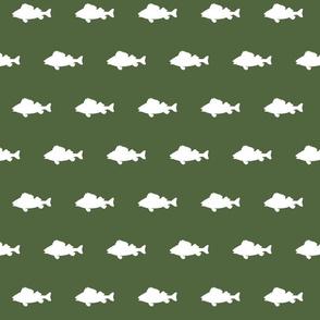 fish run on Timber green