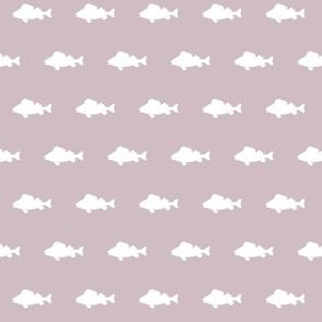 fish run on Lavender
