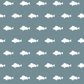 fish run on Lake