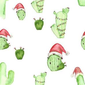 Christmas Cactus - Large 400 DPI
