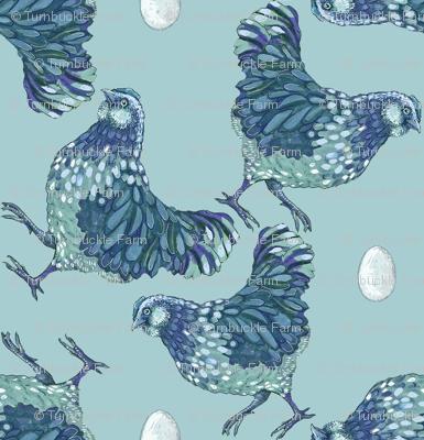 hen scatter, blueberry