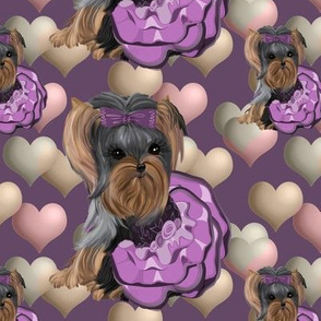 """Yorkie Lilac Hearts Small about 5"""""""