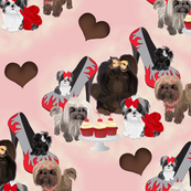 Shih tzu - Shihtzu Hearts and Shoes