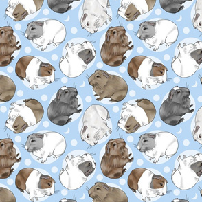 Guinea pigs and moon dots - medium blue