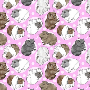 Guinea pigs and moon dots - medium pink