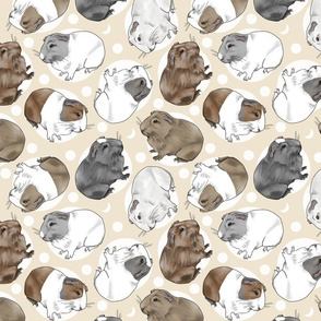 Guinea pigs and moon dots - medium tan