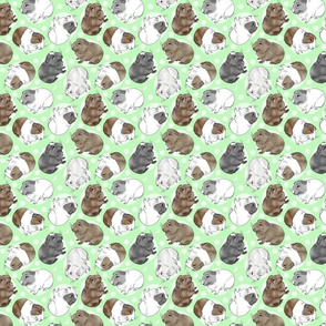 Guinea pigs and moon dots - small green
