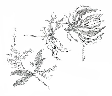 Rrgloriosa_pieris_spoonflower_final_shop_preview