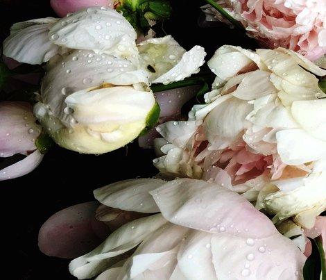 Dark_floral_3_large_format_shop_preview