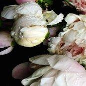 Dark_floral_3_large_format_shop_thumb