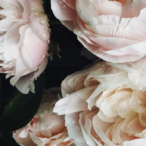 Dark_Floral_4_Large_Format