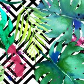 Green_tropical_plants_with_geometric_large_shop_thumb